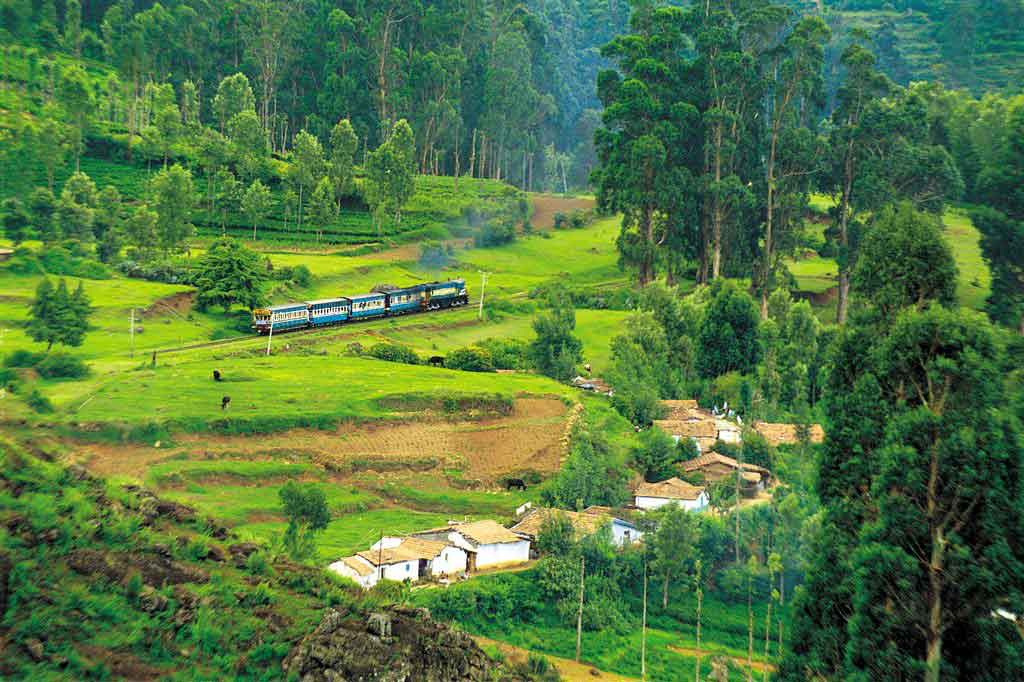 Ooty Hills | Tourist location Near Service Apartment